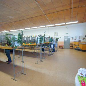 Blick in die Ausstellungshalle