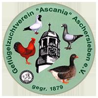 """Jubiläumsschau des GZV """"Ascania"""" Aschersleben"""